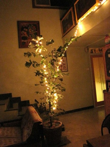 Have your own Diwali tree!
